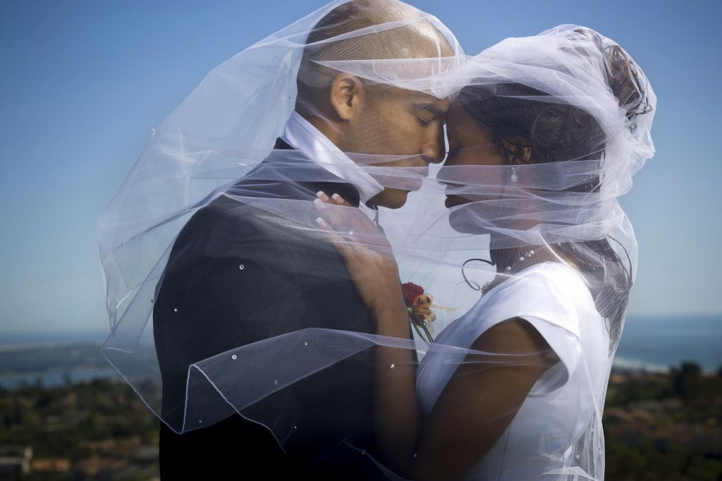 Profile of a newlywed young couple under a veil
