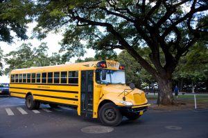 Local school bus.