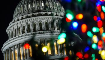 2016 Capital Christmas Tree