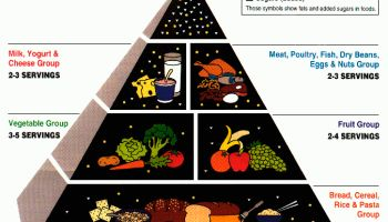 United States Department of Agriculture's Food Guide Pyramid