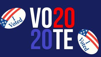 Vote 2020 Graphic